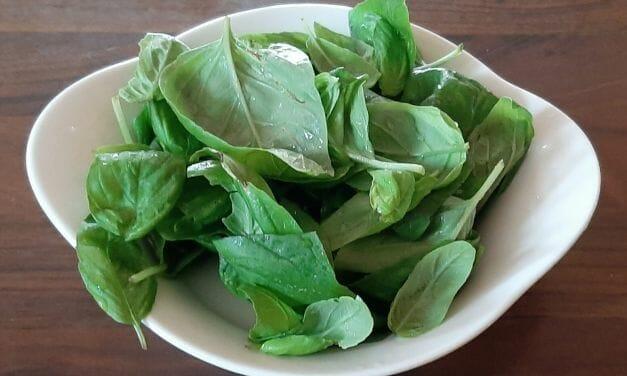 Comment congeler du basilic frais du jardin ? La bonne méthode !